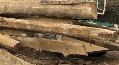 Organic materials - Wood