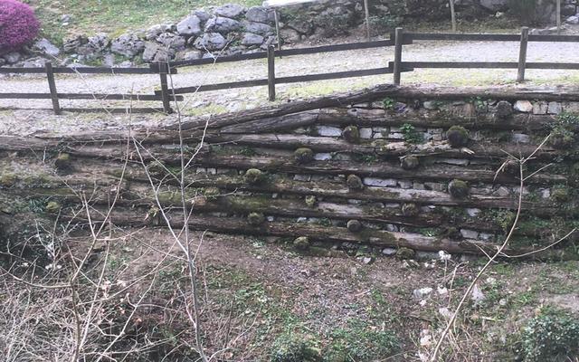 il muro marcito