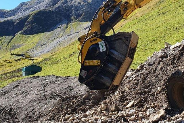 Backenbrecherlöffel macht Flug über die Alpen